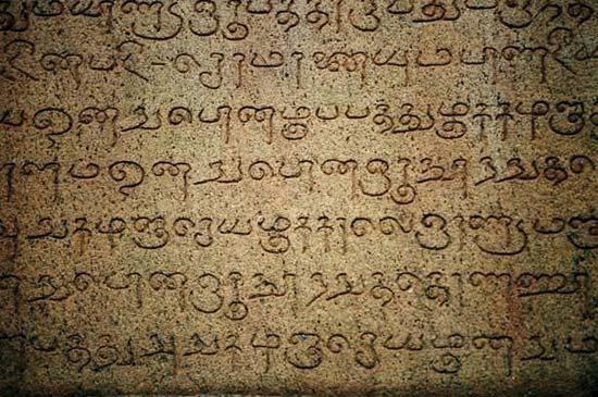Tamil langue