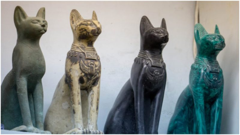 chats egypte ancienne