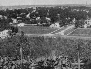 Cette photo de Kalamazoo dans les années 1870 montre ce qu'étaient les arrière-cours : des lieux de travail et non de loisirs. Avec le bétail et les toilettes extérieures, elles n'étaient pas idéales pour se divertir.
